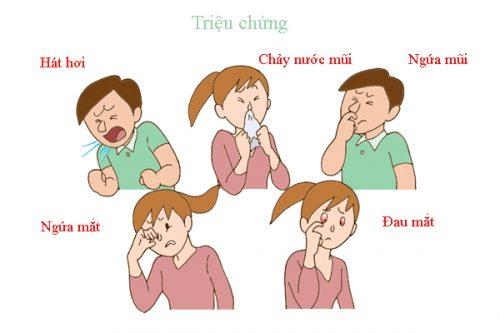 mot-so-benh-mui-xoang-thuong-gap-3